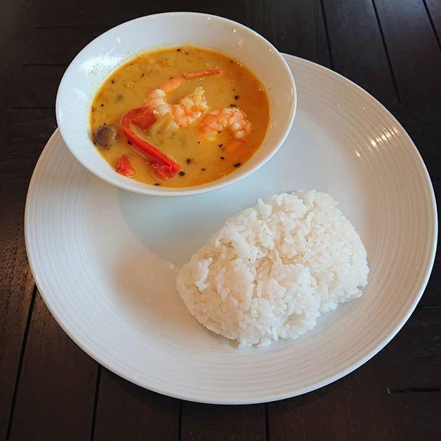 本日の日替わりランチは海老のスープカレーです。ティータイムには洋梨のタルトをご用意しております。