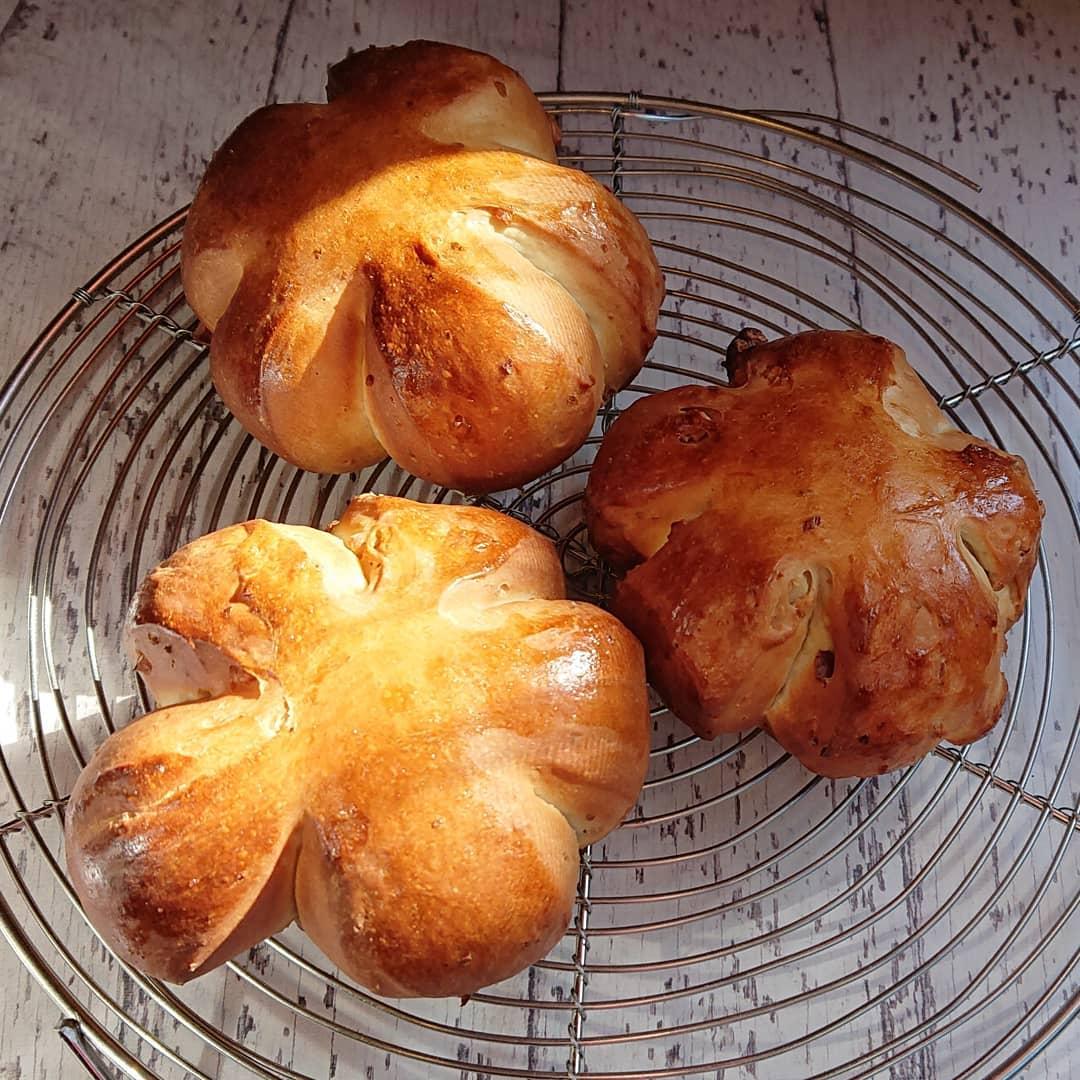 パンはクルミのパンがございます!#カフェオランジュ #三鷹ランチ #クルミのパン #いちごのロールケーキ #山本有三記念館隣 #三鷹カフェ #吉祥寺カフェ