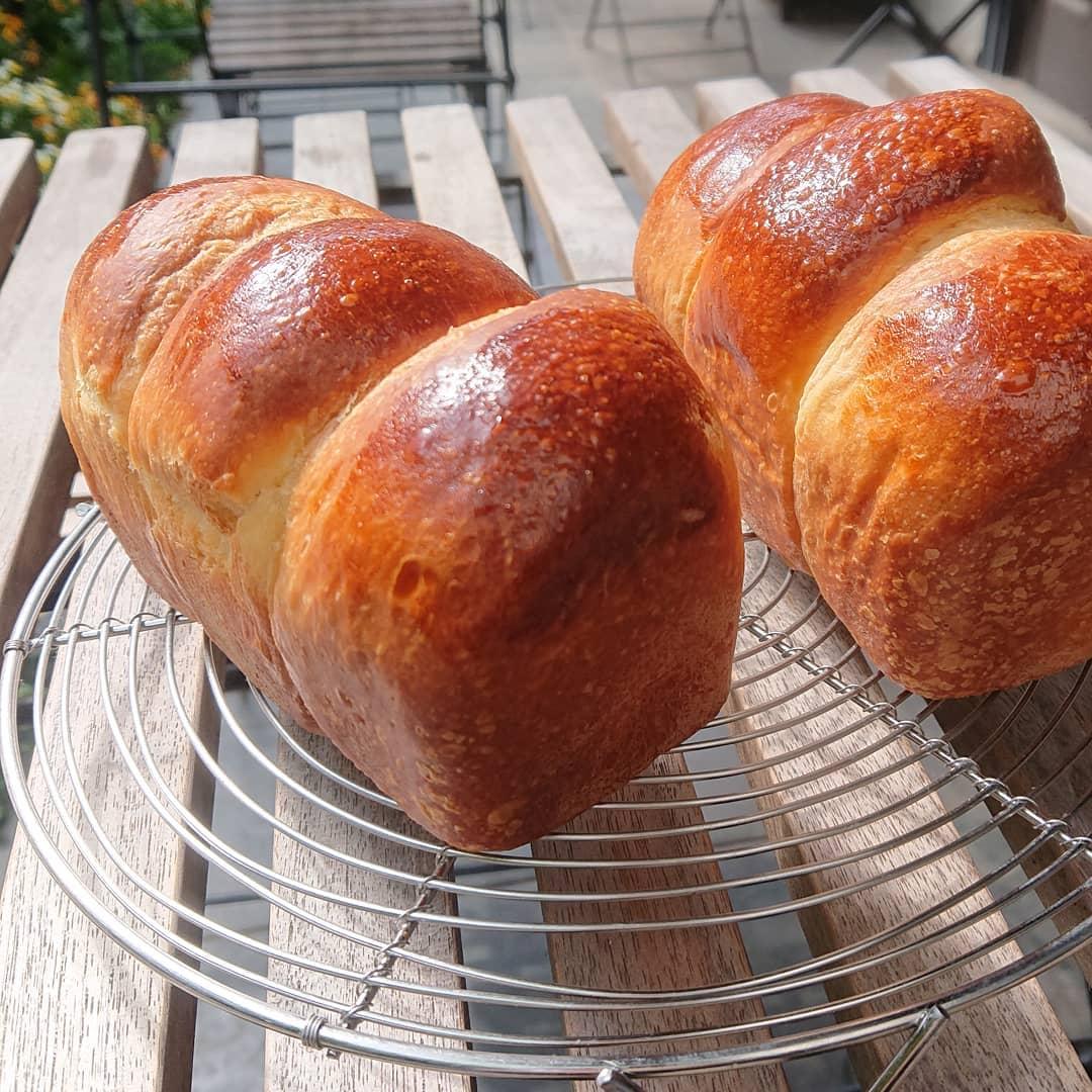 本日のパンはブリオッシュのミニミニ食パンです。フルーツサンドに使用しているブリオッシュのミニサイズの食パンです。#ブリオッシュ食パン #自家製パン #テイクアウト #カフェオランジュ #風の散歩道 #山本有三記念館隣 #三鷹カフェ #吉祥寺カフェ